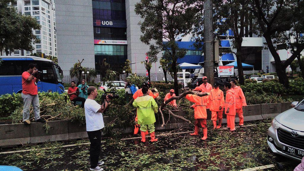 Hujan Deras, Pohon Tumbang di Jl HR Rasuna Said Arah Dukuh Atas