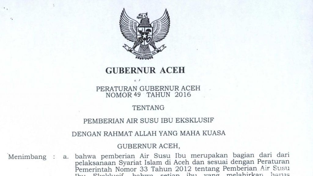 Ini Pergub Aceh soal Cuti Bersalin 6 Bulan bagi PNS yang Disentil JK
