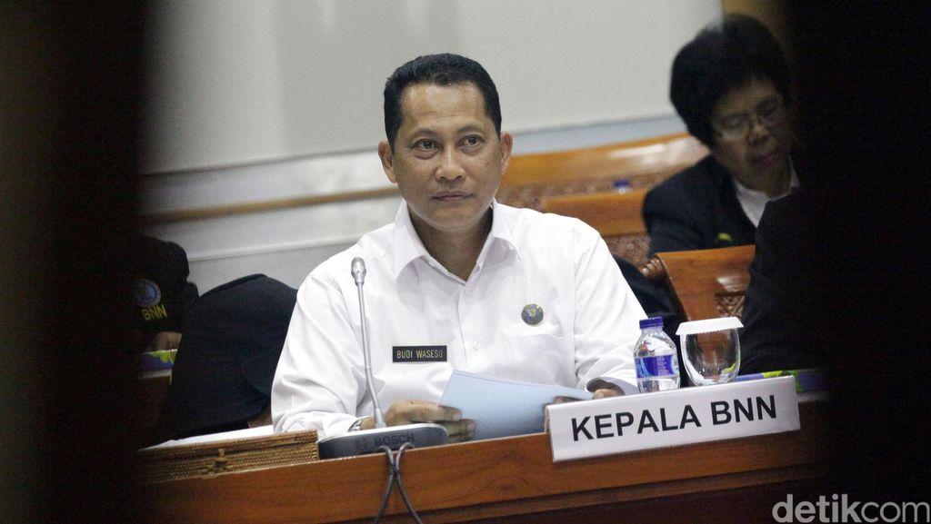 Buwas Sebut Ada 38 Oknum Polisi di Papua Terjerat Narkoba