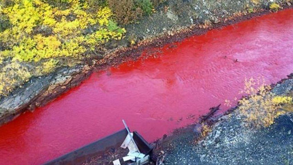 Terkuak! Misteri Air Sungai di Rusia yang Berubah Jadi Merah Darah