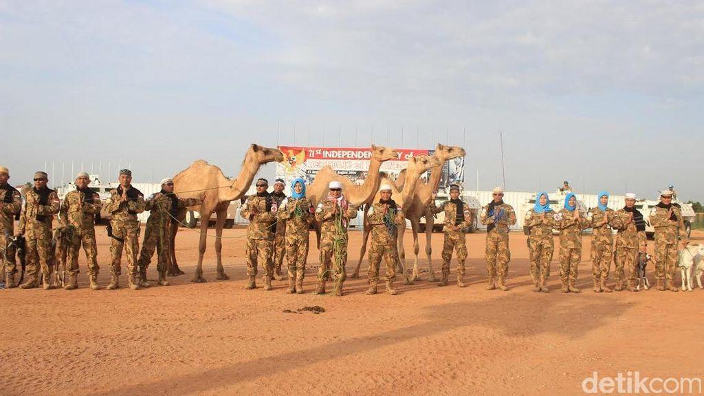 Pasukan TNI Bagikan Hewan Kurban 9 Unta, 28 Sapi, dan 304 Domba untuk Warga Sudan