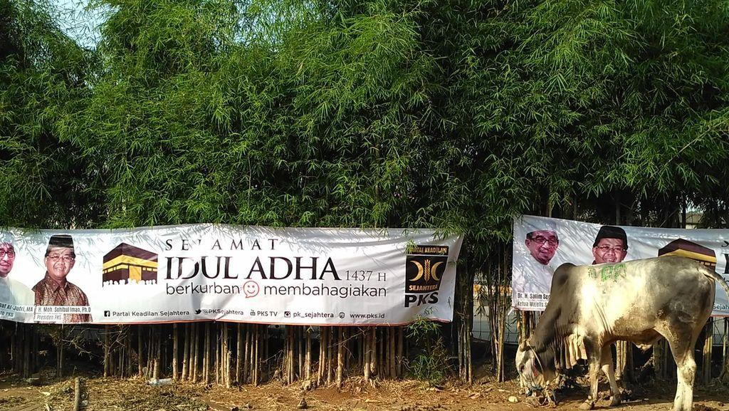 PKS Distribusikan 76.600 Hewan Kurban dari Aceh Sampai Papua