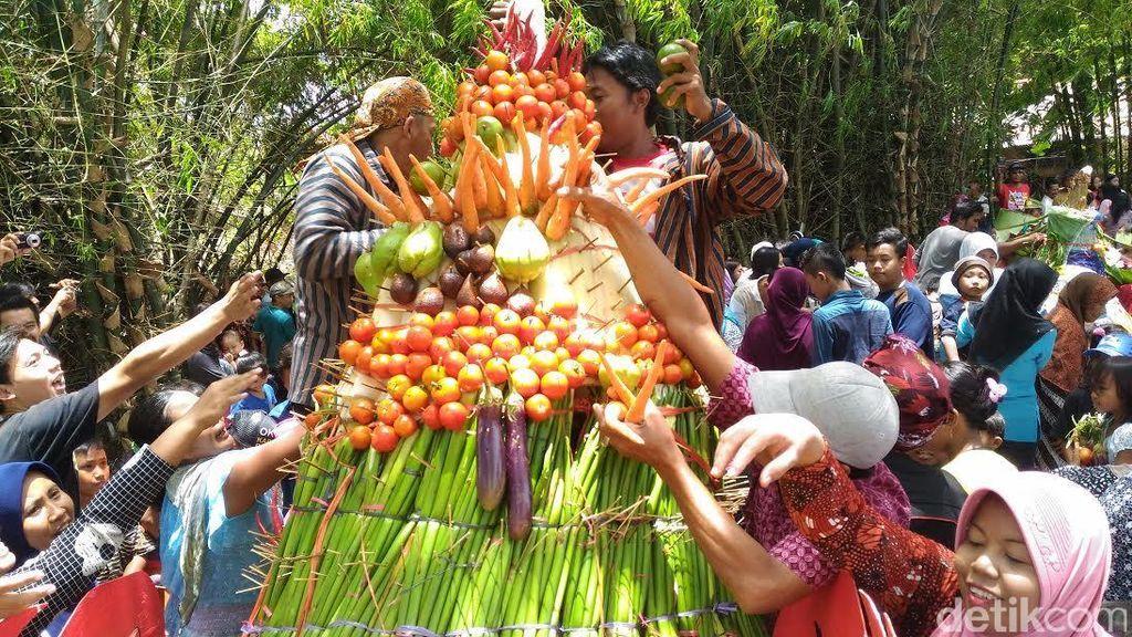 Bersih Desa di Bangkingan, Gunungan Hasil Bumi Jadi Rebutan