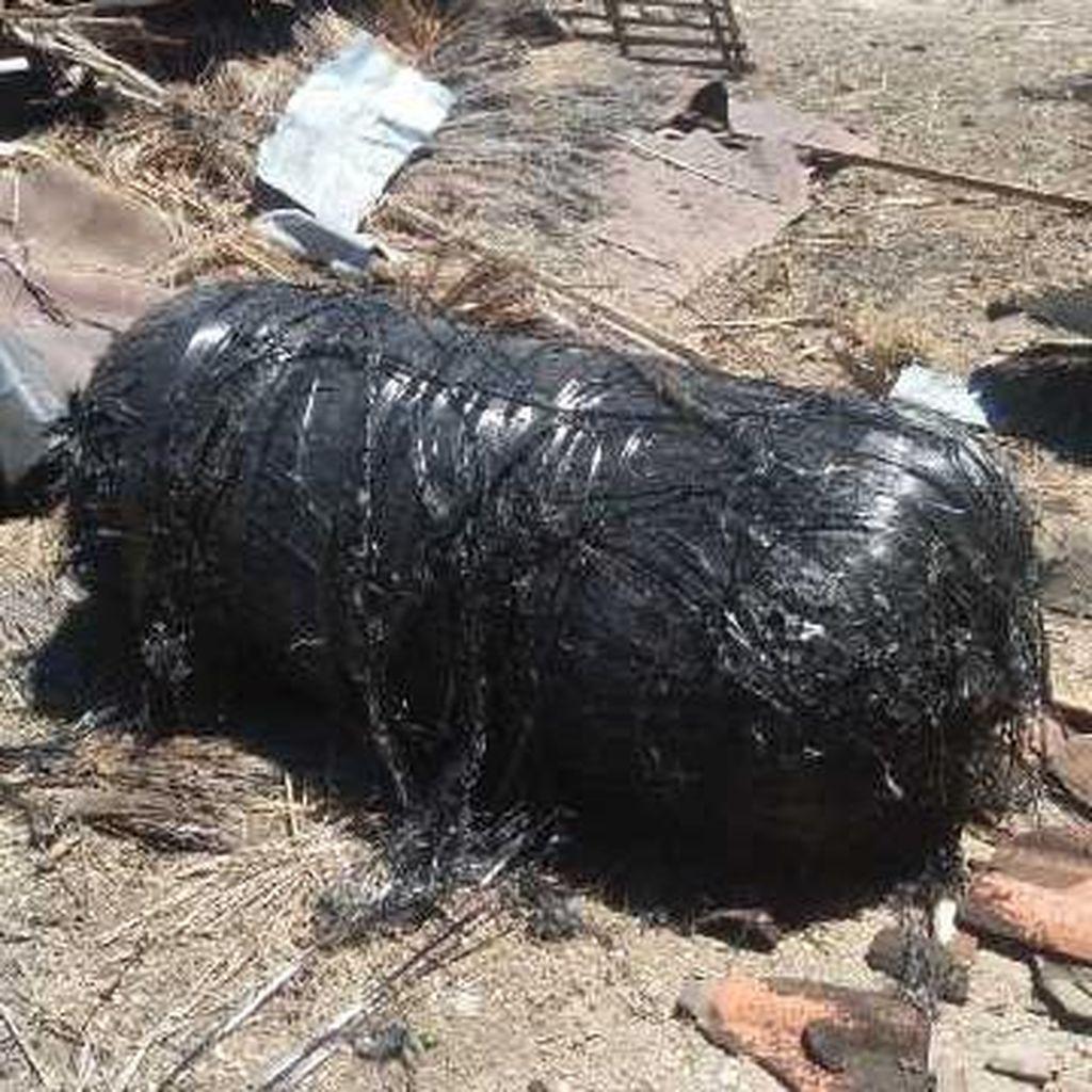 Polisi Amankan 3 Benda yang Diduga Pecahan Roket, 5 Titik di Laut Dilokalisir
