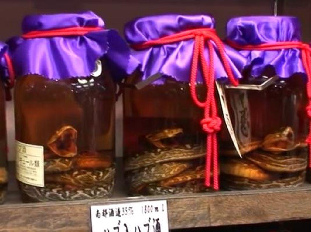 Kuliner Ekstrem di Jepang: Sake Ular