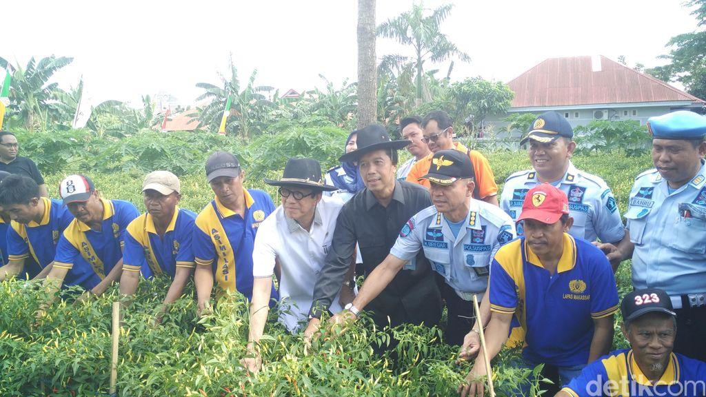Panen Cabai di Lapas Makassar, Menkum Dorong Napi Mandiri dan Berguna