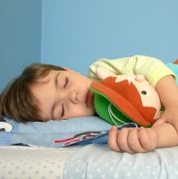 anak tidur dalam cdn Mengapa Menjadi Zombie Saat Tidur?
