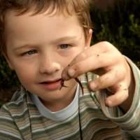 Anak Cacingan Tidak Mudah Kena Alergi