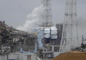 pltn-fukushima-bocor