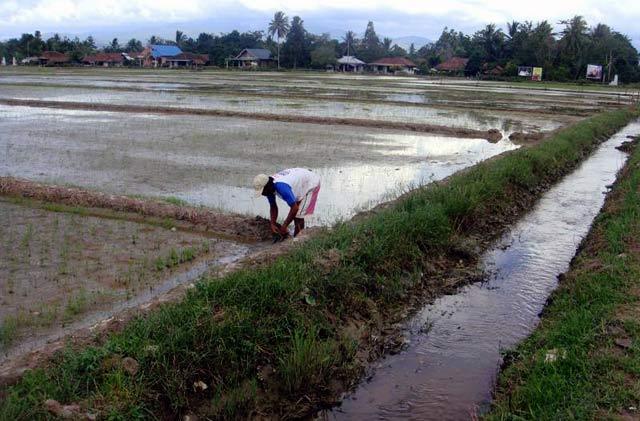 Menyelusuri Pulau Buru di Maluku
