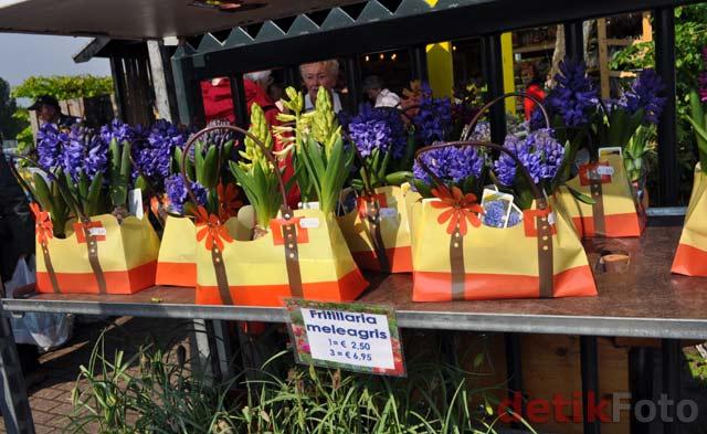 Menimati Indahnya Taman Tulip