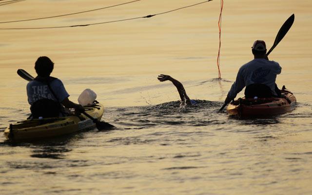 Diana Coba Taklukkan Lautan Penuh Hiu