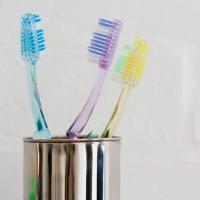 sikat gigi dalam ts Tips Menyimpan Sikat Gigi Agar Tidak Terkontaminasi Bakteri