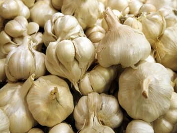 tips cara pengobatan penyakit kolesterol darah jantung dengan bawang putih
