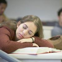 Otak Manusia Tetap Bisa Belajar Sambil Tidur