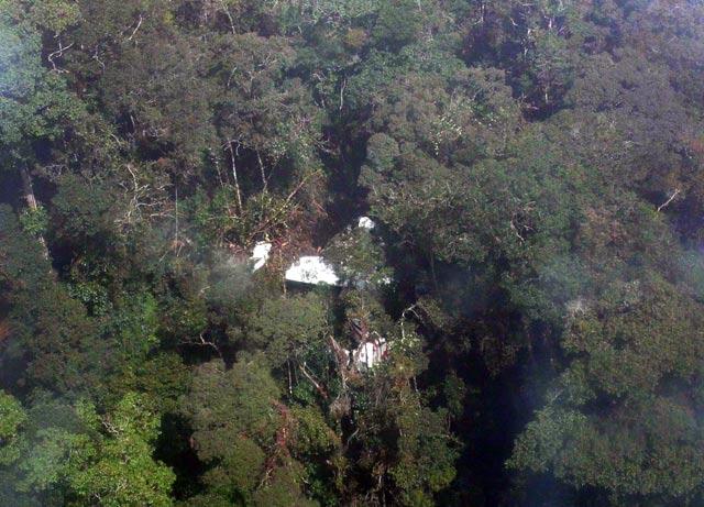 Pesawat Cassa 212 NBA Tersangkut di Pohon