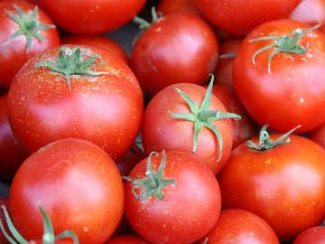 Makanlah Tomat Agar Rambut Indah dan Kuat!