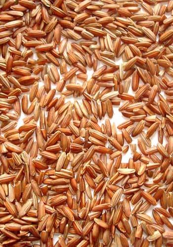 Ganti Nasi Putih dengan Nasi Merah