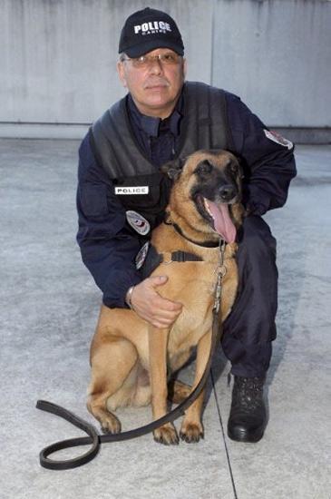 Lacak Ribuan Penjahat, Anjing Diberi Medali