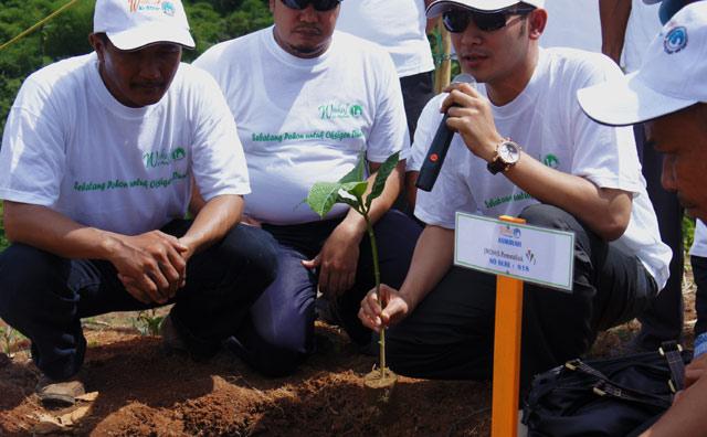 Yuk Berwakaf Pohon Jabon