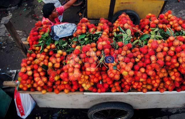 Rambutan Serbu Jakarta
