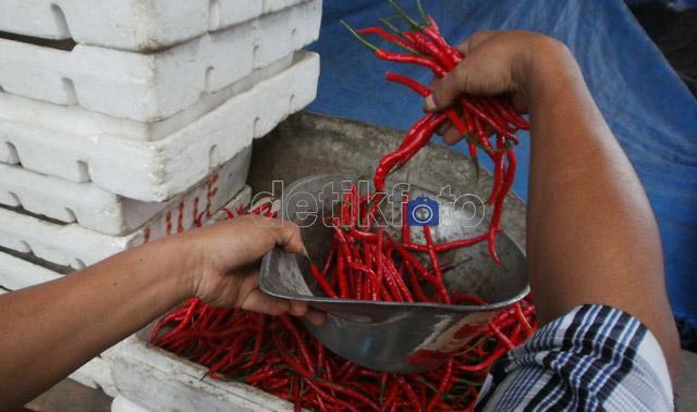 Harga Cabai Merah Tembus Rp 65.000/Kg