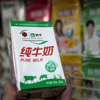 Racun Pemicu Kanker Ditemukan di 2 Produk Susu China