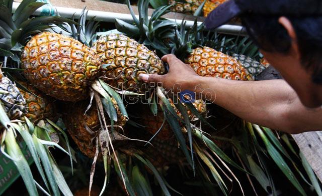 Yess.. Nanas Indonesia Rajai Pasar Global