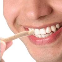 Alasan Siwak Efektif Membersihkan Gigi