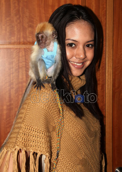 Ada Monyet Diantara Roby & Aurelie Moeremans