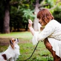 5 Kebiasaan Sehat Anjing Yang Bisa Ditiru [ www.BlogApaAja.com ]