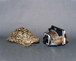 Inilah 5 Kamera Terunik di Dunia