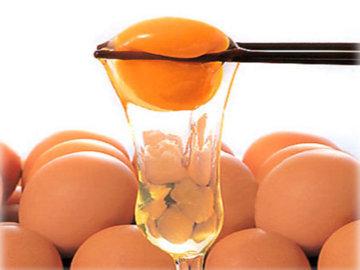 Mana yang Lebih Bernutrisi? Telur Utuh, Kuning atau Putihnya?