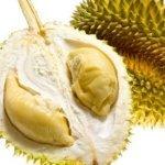 durian bikin gemuk