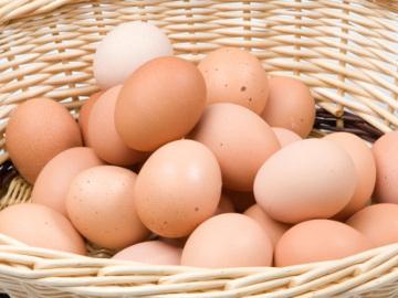 Wah, Ternyata Kini Telur Lebih Bernutrisi Dibandingkan 30 Tahun Lalu!
