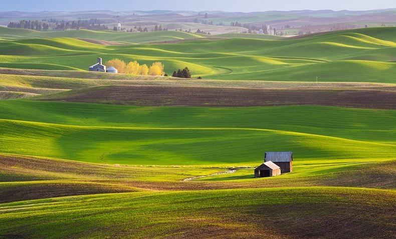 http://images.detik.com/content/2012/10/05/1383/090618_padangrumput1.jpg