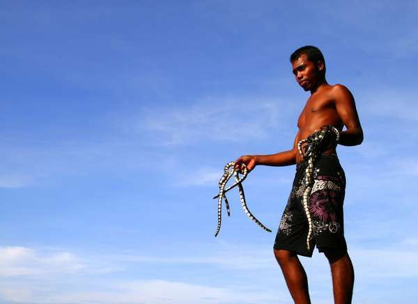 073132 pulausatwa5 5 Pulau di Indonesia Ini Penghuninya Bukan Manusia!