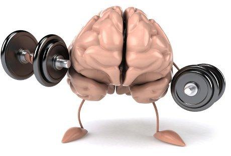 [Image: 130504_brainpower.jpg]