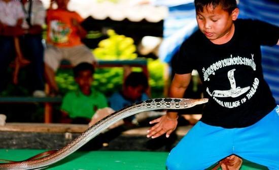 Salah satu anak laki-laki di desa kobra tak unjuk kebolehan (oddity