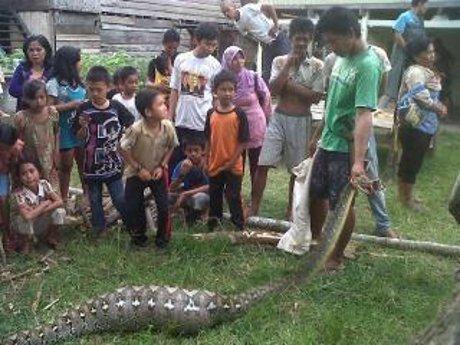 Makassar, – Dusun Attobaja, Desa Talumae, Kecamatan Barebbo
