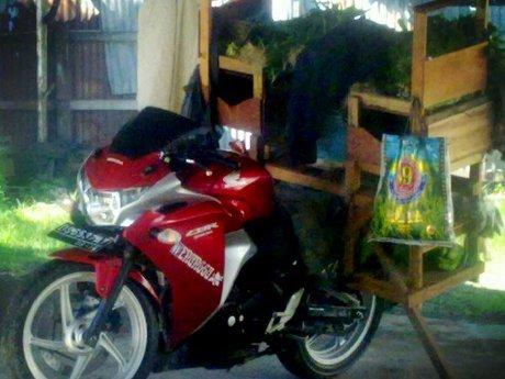 Di Papua , Honda CBR250R untuk Jualan Sayur