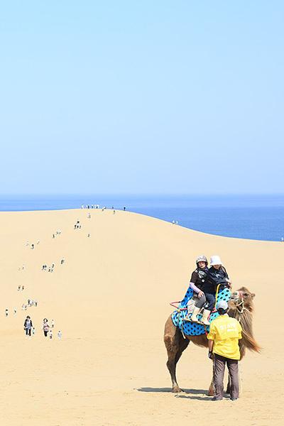 Padang pasir di pinggir laut