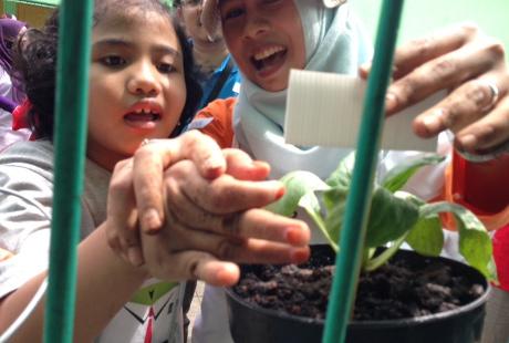 """Liputan @detikcom: """"Lewat Berkebun, Anak-anak SLB Petamburan Belajar Tanggung Jawab"""" bersama @JktBerkebun"""