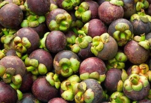 Manggis dan kelapa Banyuwangi tembus pasar eksport.