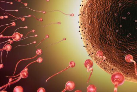 Turun Berok Bisa Bikin Sperma Keok?