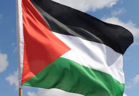 palestinaflagdlm.jpg