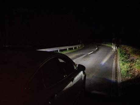 Lampu Pintar Ford Bisa Deteksi Obyek di Kegelapan Sejauh 120 Meter