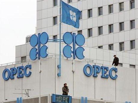 OPEC : Hingga Tahun 2040 Sebagian Besar Mobil Masih Pakai BBM