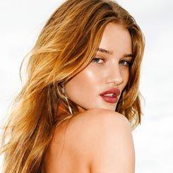 Rosie, Si Seksi Pengganti Megan Fox di \Transformers 3\