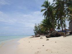 Derawan Island, Spot Diving Terbaik Setelah Raja Ampat
